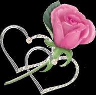 el_amor_todo
