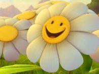 devocional-cristiano-flores