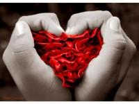 corazon rojo con manos