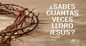 Jesús Lloro ¿Cuantas Veces En La Biblia?