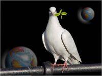 devocional-cristiano-paz