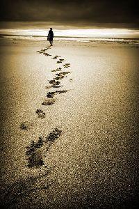 devocional-diario-el-camino-de-nuestras-vidas
