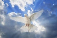 Dios - Espiritu Santo