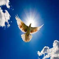 representa-espiritu-santo
