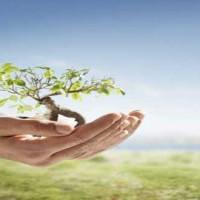 el-crecimiento-personal-espiritual-biblia