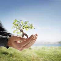 el-crecimiento-personal-espiritual-biblia1