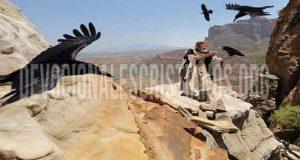 alimentado-por-cuervos-Elias