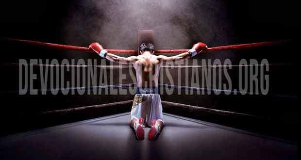 boxeador de rodillas biblia