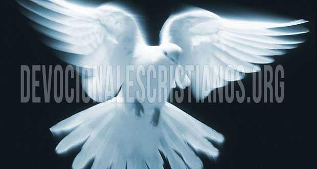 Devocionales Cristianos Devocional Reflexiones Cristianas Biblia Audio