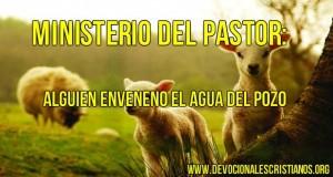 ministerio pastor ovejas agua.jpg