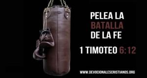 12 versiculos biblicos pelear tu destino.jpg