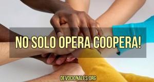 No solo opera coopera