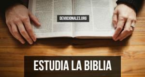 estudia-la-biblia-1