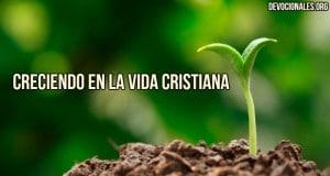 crecimiento-vida-cristiana-biblia