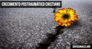 crecimiento-cristiano-postraumatico-Biblia