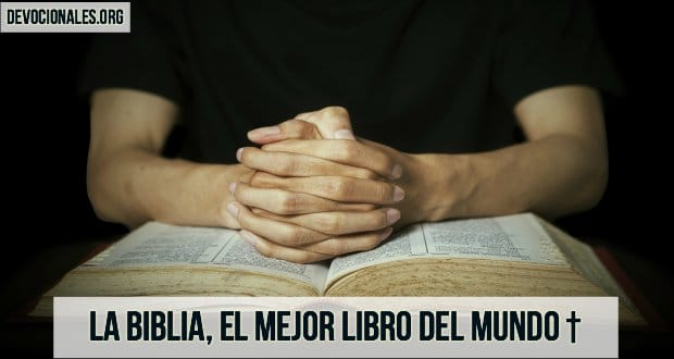 La biblia el mejor libro del mundo amor para leer - El mejor colchon del mundo ...