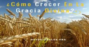 Como Crecer En La Gracia Divina-2