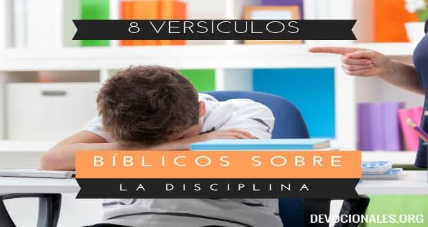 Versículos Bíblicos Sobre La Disciplina En La Biblia