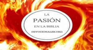 pasion-biblia-cristianos-2