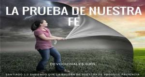 La Prueba de Nuestra Fe Produce Paciencia - Santiago 1:3