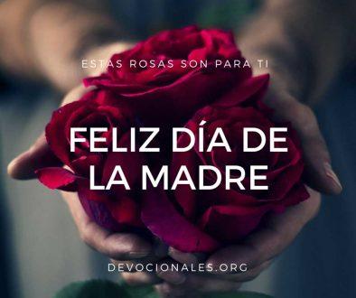 Día de la Madre: Estas Rosas Son Para Ti