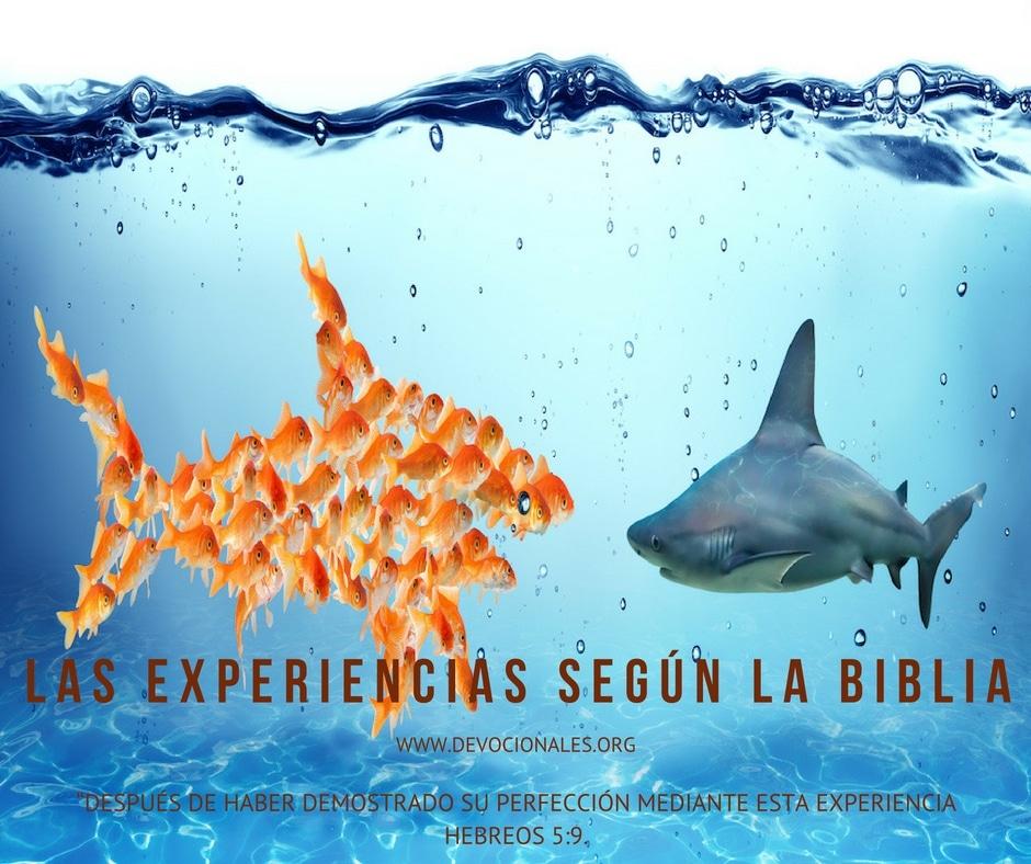 experiencias-biblia