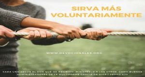 biblia-servicio-voluntario
