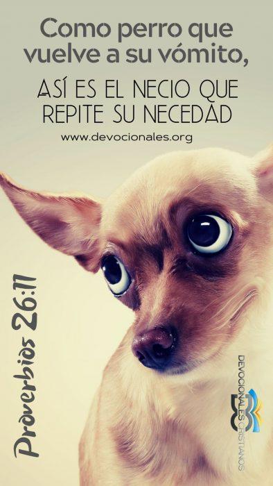 RVR-1960-proverbios-26-11-perro-vomito