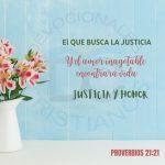 proverbios-21-21-el-que-busca-la-justicia