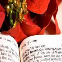 navidad biblia