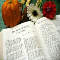 thanksgiving accion de gracias o navidad