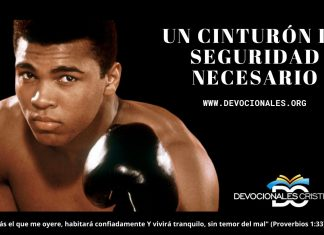 Muhammad-Ali-reflexion