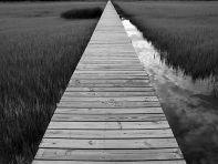 devocional-camino-angosto-espacioso