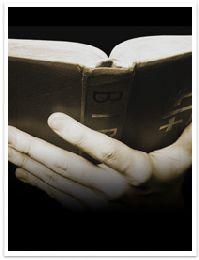 Devocional Diario-El Pastor Perfecto