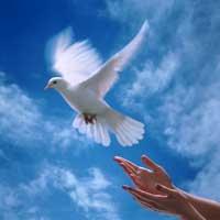 confianza-total-en-Dios