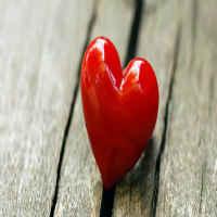 corazon de siervo