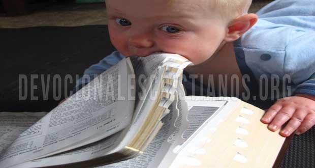Matrimonio Palabra Biblia : Como aumentar tu hambre por la palabra de dios