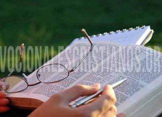 Biblia abierta lentes