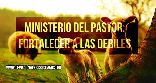 ministerio pastor ovejas.jpg