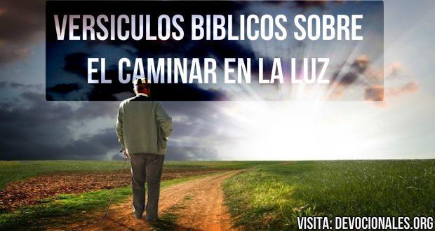 7 Versículos Bíblicos Sobre Caminar En La Luz De Cristo