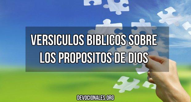 versiculos biblicos propositos de Dios