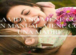 Día De La Madre: La Vida No Viene Con Manual