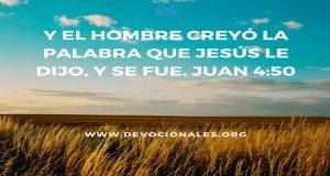 creer-Jesus-Biblia