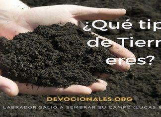 Tipos-de-tierra-Biblia