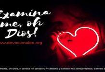 corazon-biblia-salmos-David
