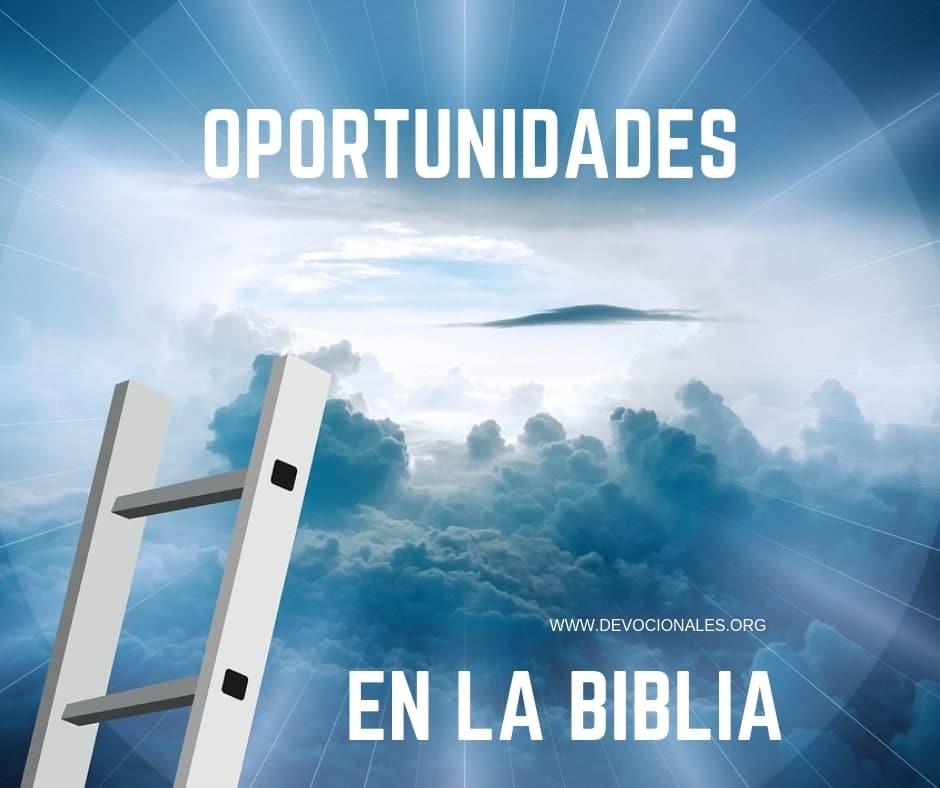 grandes-oportunidades