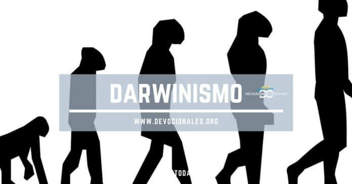 darwin-biblia-noticias